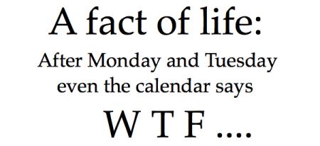 Monday14