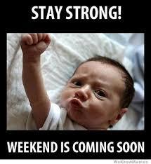 Weekend 11