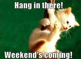 Weekend 9