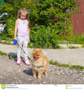 little-girl-walking-her-dog-leash-image-has-attached-release-35902741