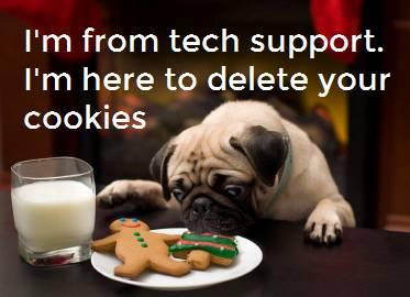04 - Tech Support