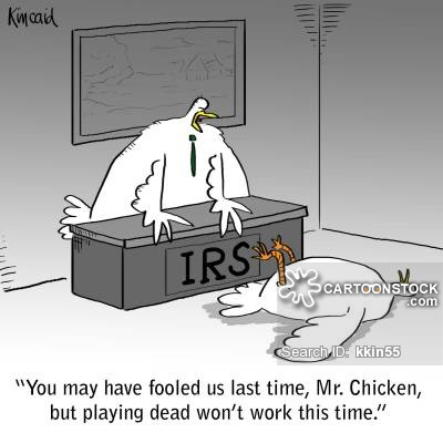 'You may have fooled us last time, Mr. Chicken, but playing dead won't work this time.'