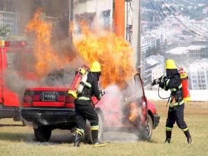firefighters-demonstrating-their-skills-on-annual-fire-brigade-day